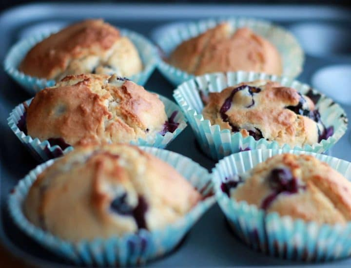 A pan full of fresh baked, blueberry scone muffins
