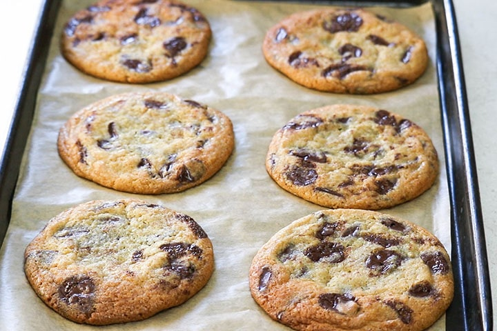 close up of homemade chocolate chip cookies on cookie sheet