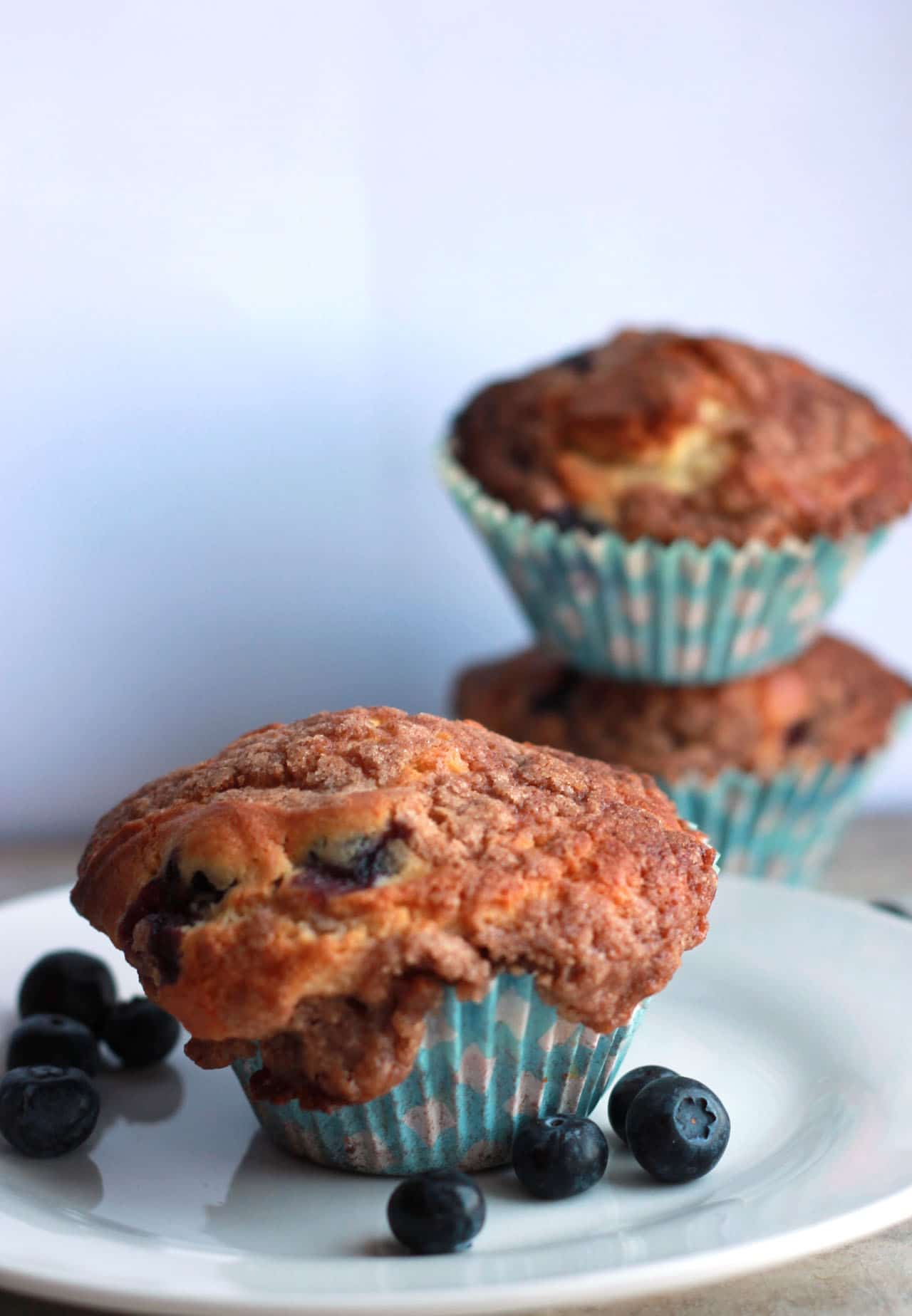 Blueberry Crumb Cake Muffins - Erren's Kitchen