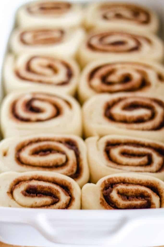 raised cinnamon rolls in the pan ready to bake
