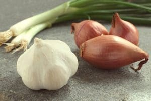 A cutting board with two green onions, unpeeled, whole shallots and a head of garlic