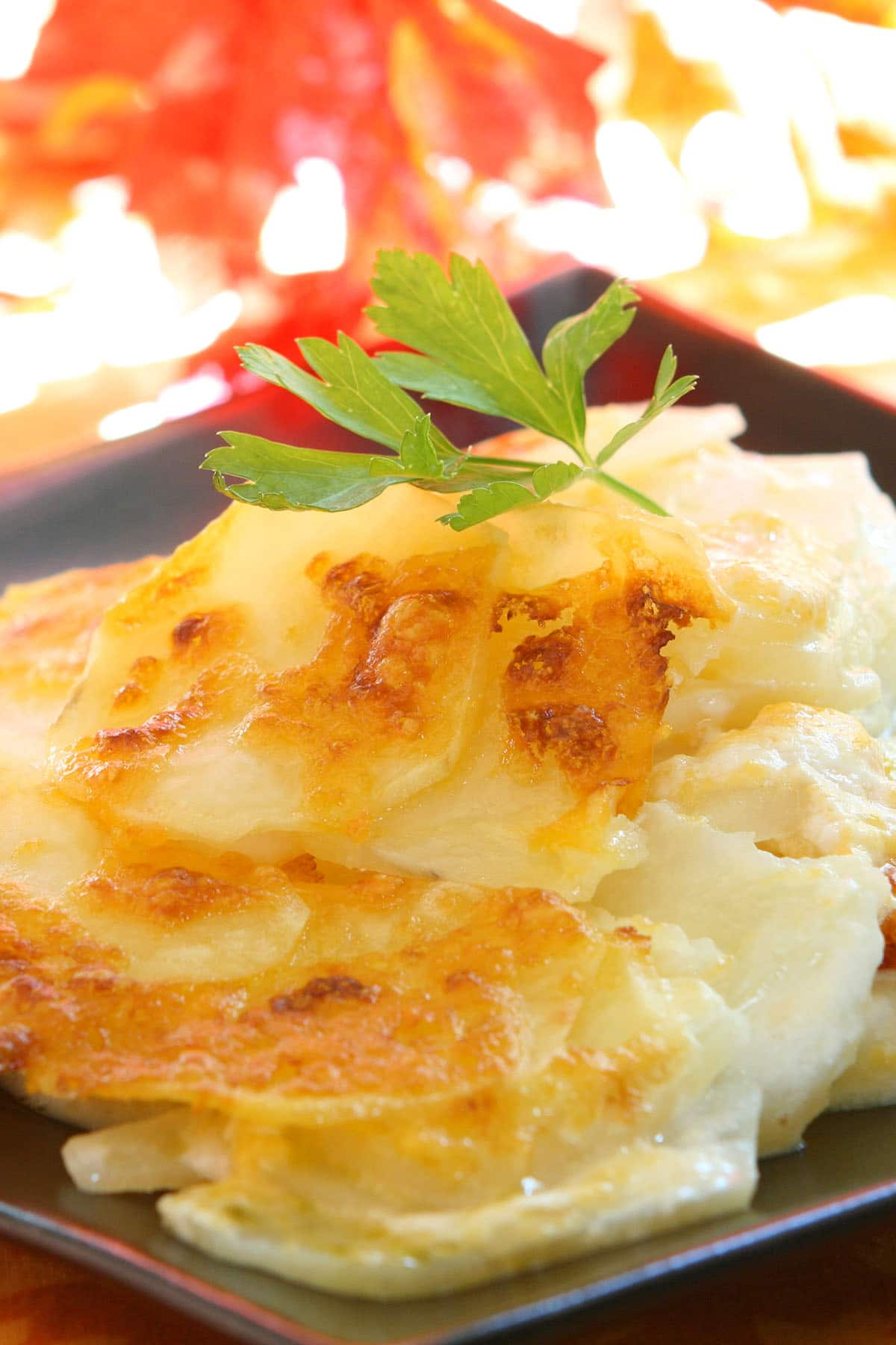 Cheesy Scalloped Potatoes served on a dish