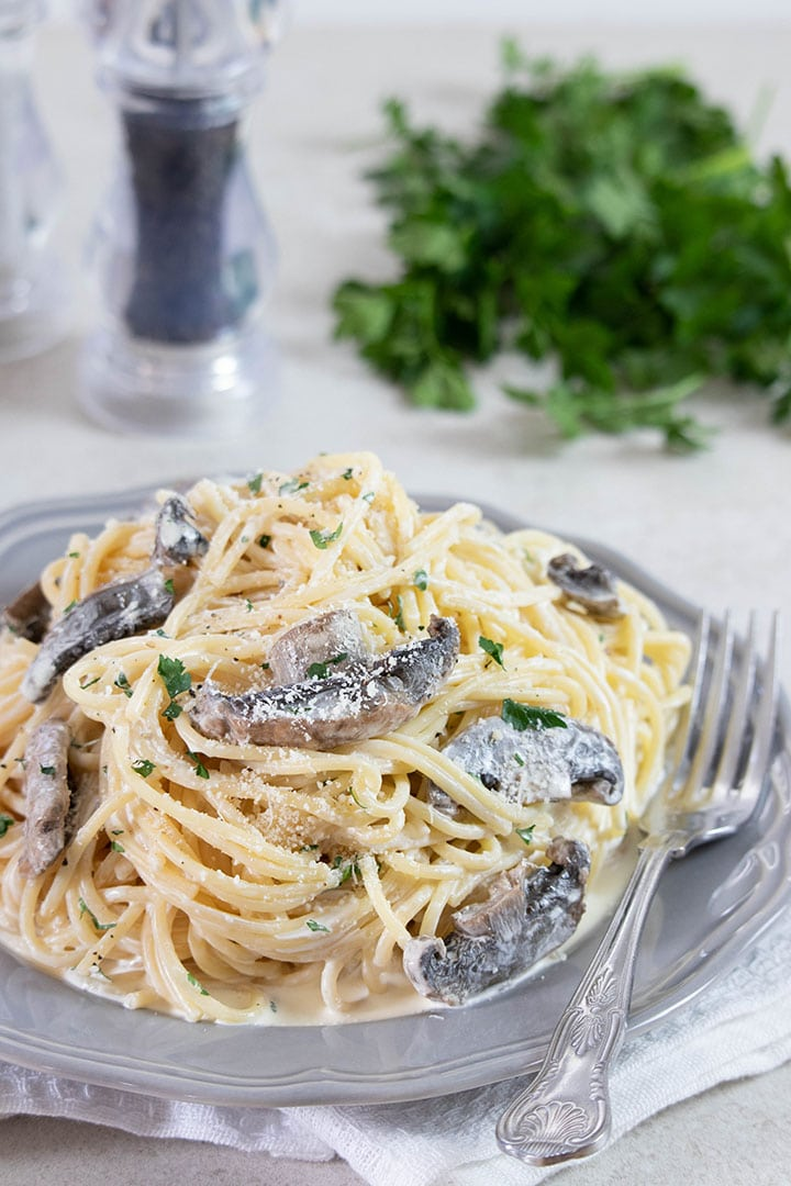 Creamy Spaghetti on a grey plate with salt, pepper, and parsley in the background