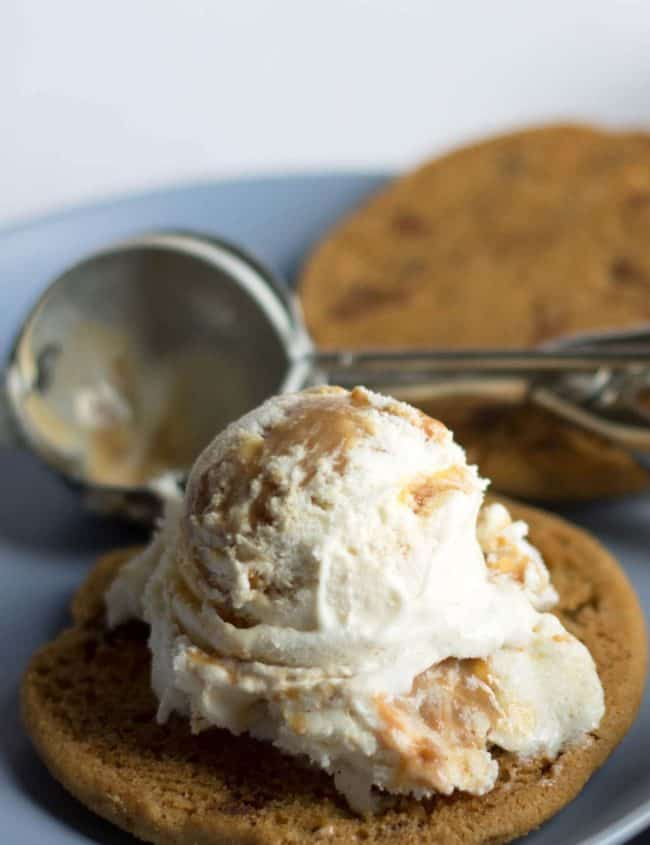A scoop of icecream on a chocolate chip cookie