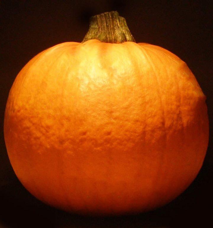 a large pumpkin