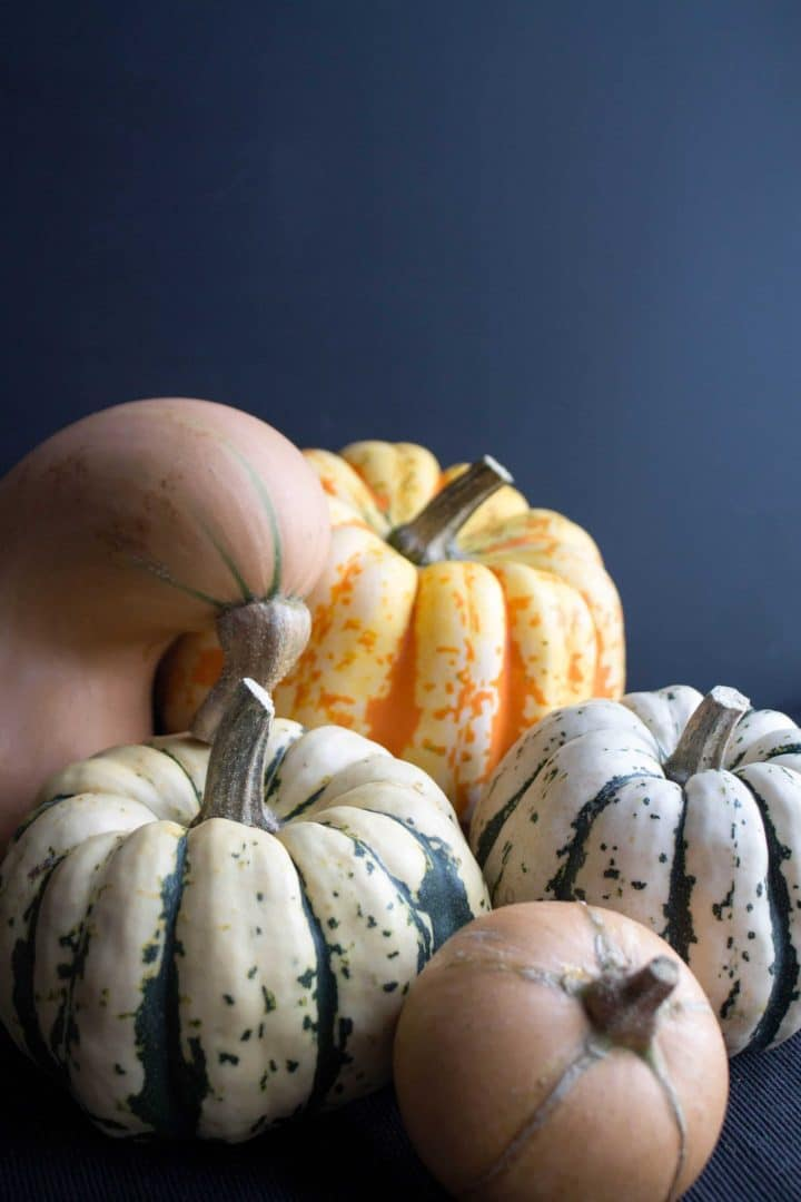 A variety of winter squash in different shapes and sizes