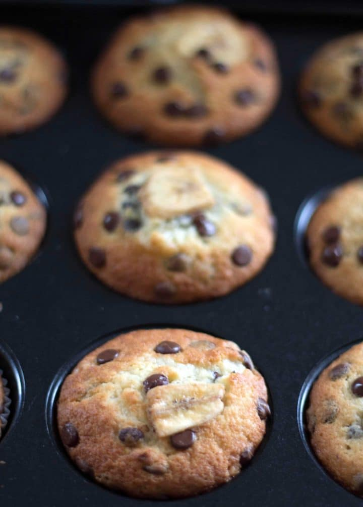 Chocolate Chip Banana Muffins freshly baked, still in the pan