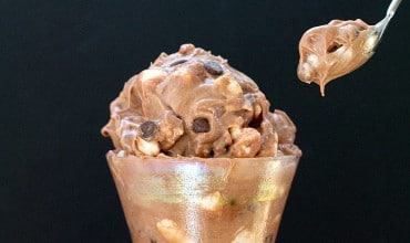 No Chrurn Chocolate Chip Marshmallow Ice Cream feature