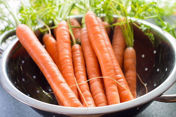 fresh Carrots in a colander with the stems still attached.