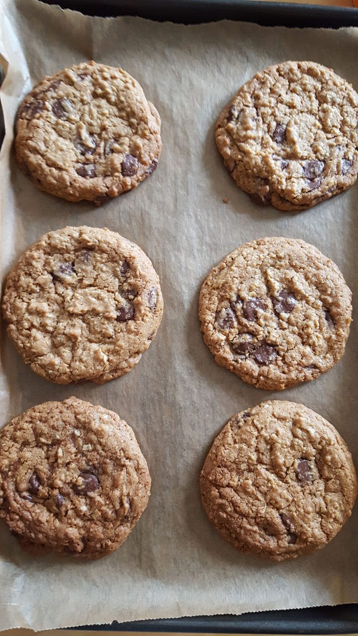 Chocolate Chip Oatmeal Cookies freshly baked still on the pan