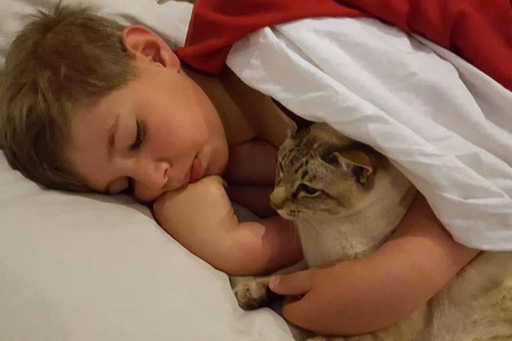 a little boy sleeping with a cat