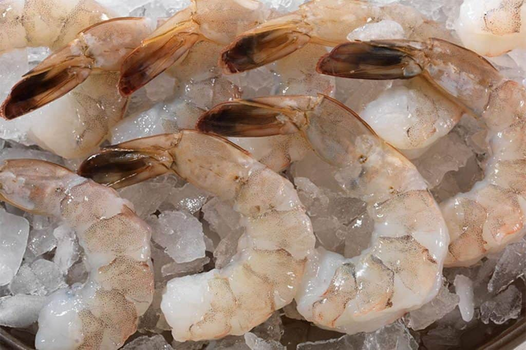 raw shrimp with tails still on stitting on ice