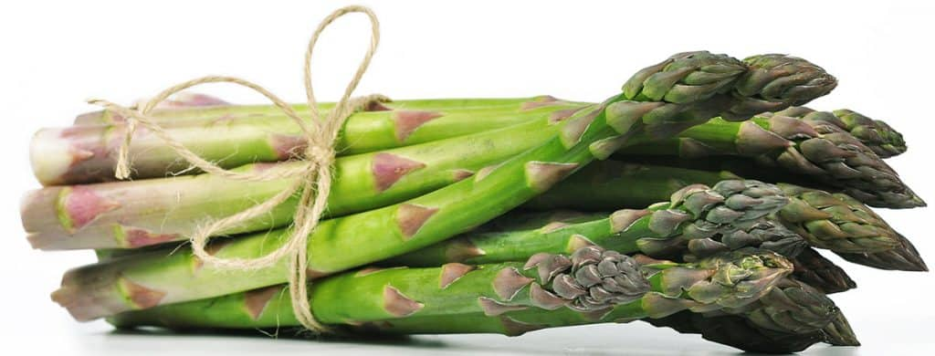 a bunch of asparagus tied with twine