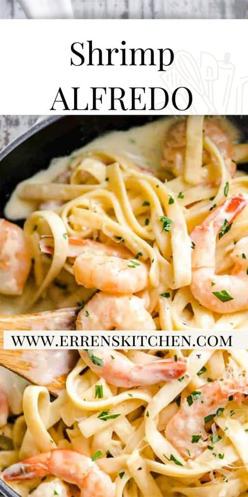 shrimp and pasta in a creamy sauce